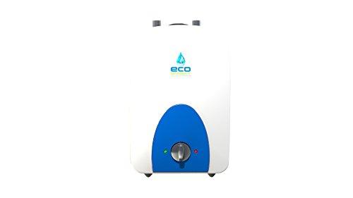 Ecosmart ECO MINI 2.5 (2.5-Gallon 120V Electric Mini-Tank Water Heater) Review